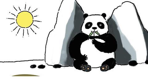 ทำไมหมีแพนด้าต้องใส่แว่นกันแดด?
