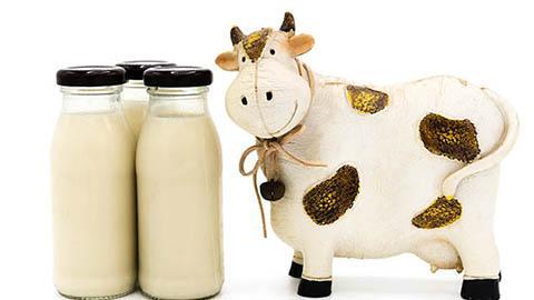อาการแพ้โปรตีนนมวัว